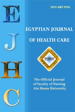 Egyptian Journal of Health Care
